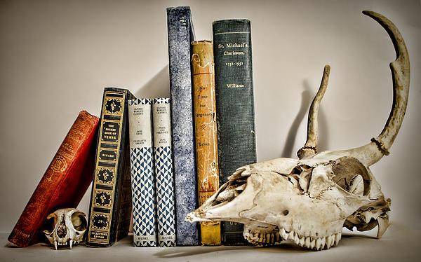 Books And Bones Print by Heather Applegate