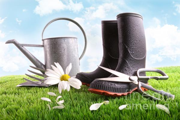 Boots With Watering Can And Daisy In Grass  Print by Sandra Cunningham