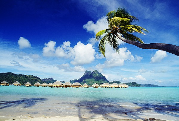 Bora Bora, Lagoon Resort Print by Himani - Printscapes