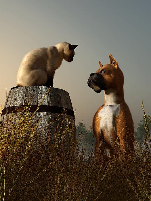 Boxer And Siamese Print by Daniel Eskridge