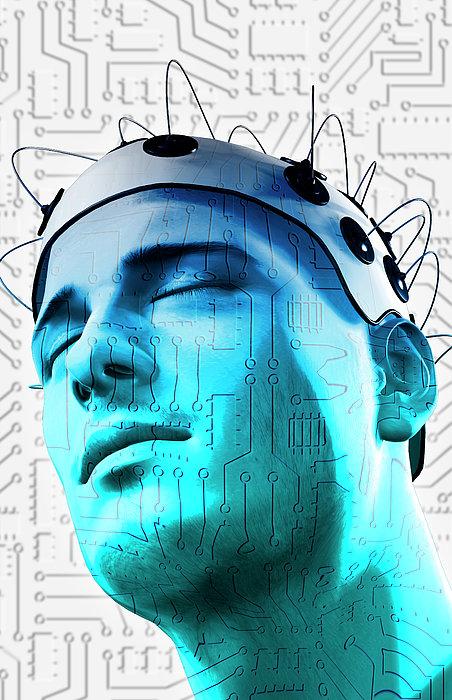 Brain Circuit Print by MedicalRF.com