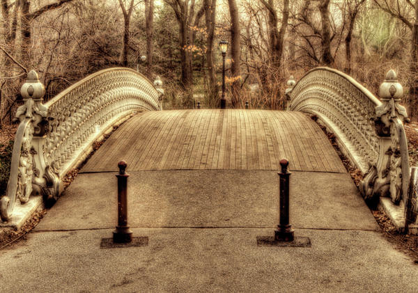 Bridge Print by Ariane Moshayedi