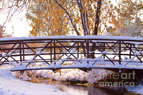 Bridge Over Icy Waters Print by James BO  Insogna