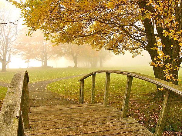 Parrish Todd - Bridge to Autumn