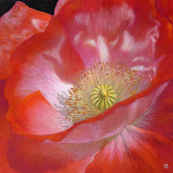 Bright Red Poppy Painting