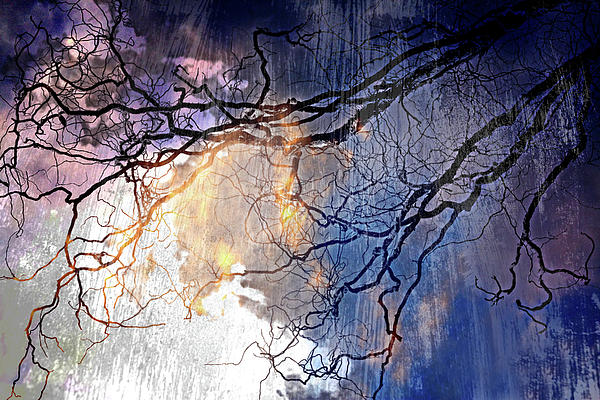 Brilliant Rain Print by Gray  Artus