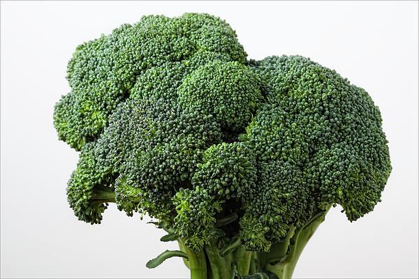 Broccoli Print by Robert Ullmann