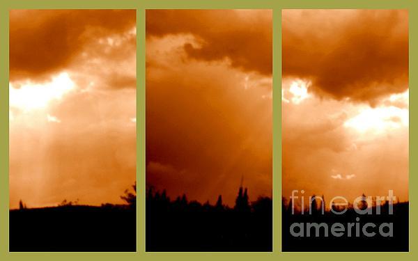 Sue Jenkins - Bronze Sky