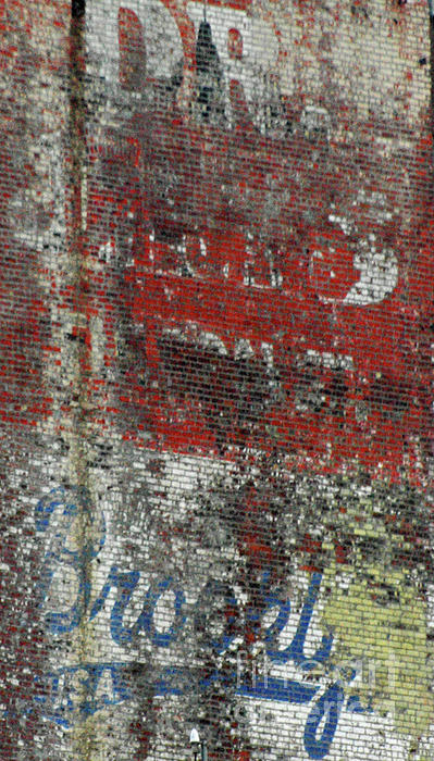 Brooklyn Walls Print by Anahi DeCanio