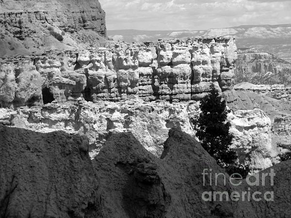 Minden Ten Eyck - Bryce Canyon National Park I