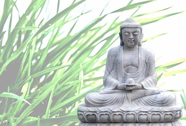 Buddha Grass Print by Hannes Cmarits