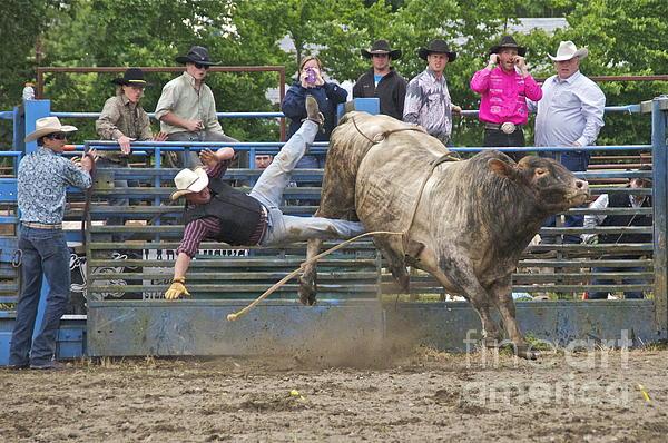 Bull 1 - Rider 0 Print by Sean Griffin