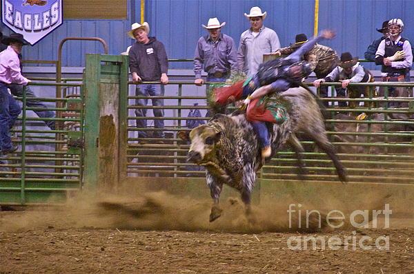 Bull Rider 1 Print by Sean Griffin