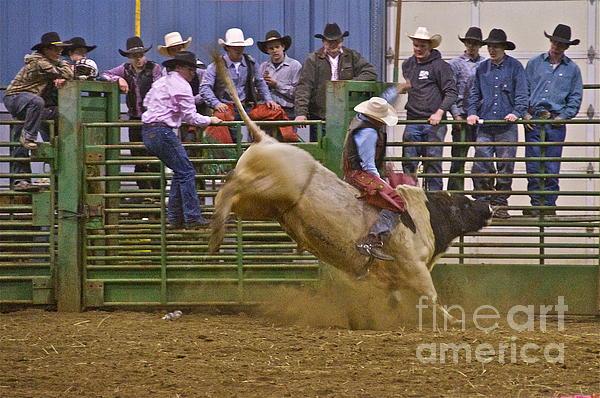 Bull Rider 2 Print by Sean Griffin