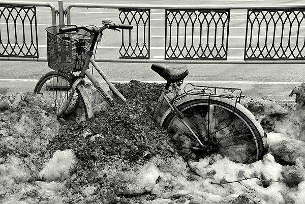 Buried In The Snow Print by Dean Harte