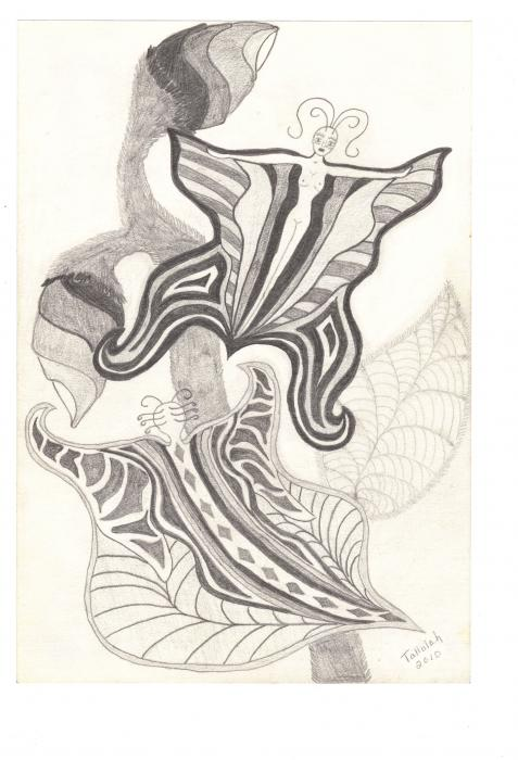 Butterflies Drawing Butterflies Fine Art Print Tallulah