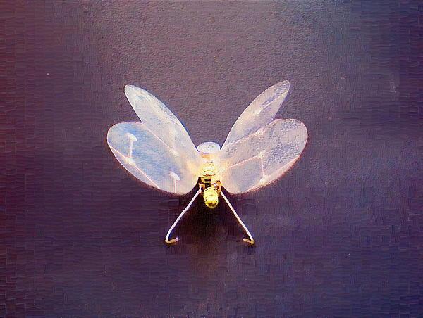 Max Shkoropado - Butterfly #2