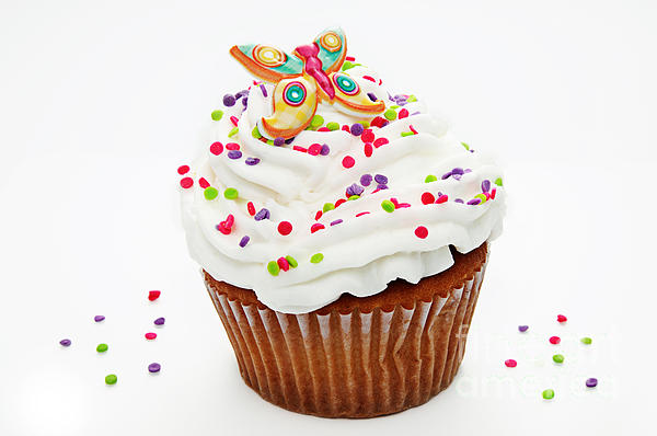 Andee Photography - Butterfly Cupcake