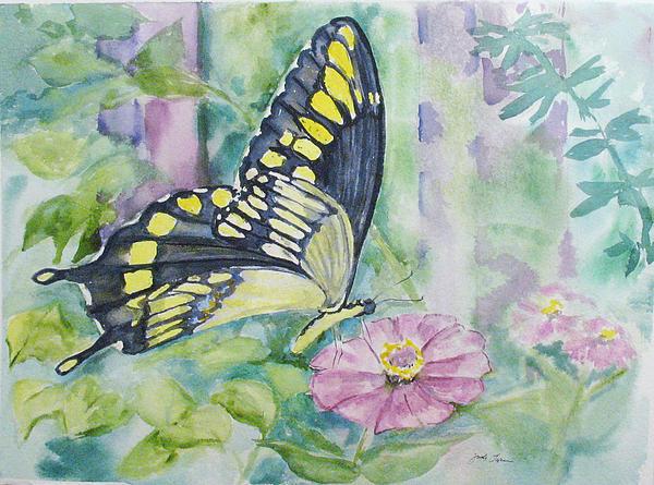 Butterfly In My Garden Print by Judy Loper