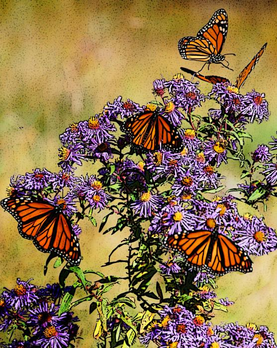 Butterfly Party Print by Diane E Berry