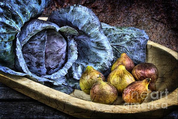 Cabbage And Figs Print by Sari Sauls