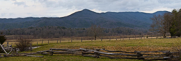 Cade's Cove - Smoky Mountain National Park Print by Christopher Gaston