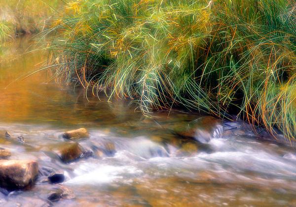 Utah Images - Calf Creek in Grand Staircase- Escalante Nat
