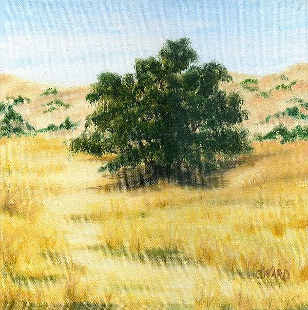 California Oak Print by Colleen Ward