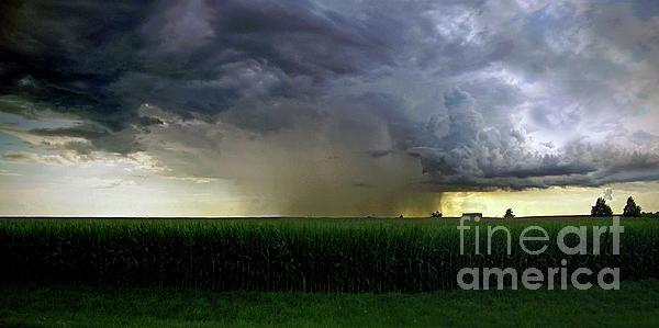 Sue Stefanowicz - Calm Before The Storm