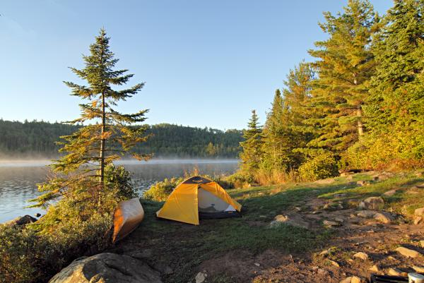 Campsite On Alder Lake Print by Larry Ricker