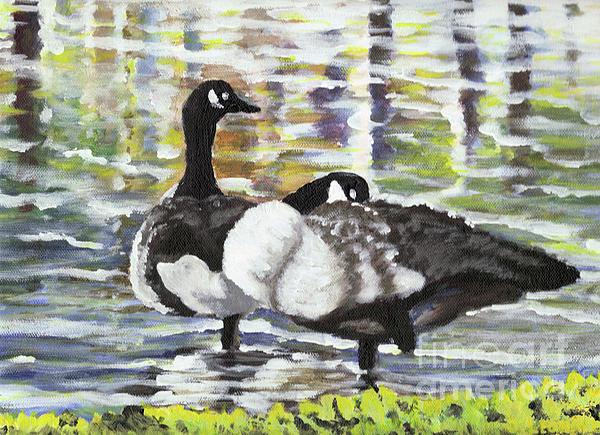 Canada Geese At Ballard Park Print by James Leonard