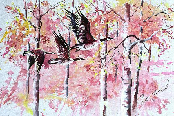 Canadian Geese In Flight Print by Connie Williams