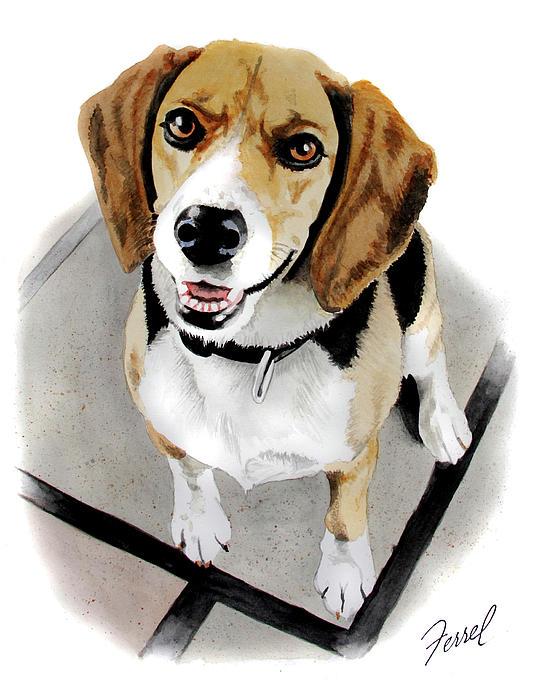 Canine Cutie Print by Ferrel Cordle