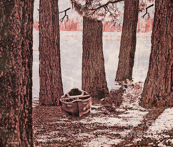 Canoe In The Woods Print by Cheryl Young