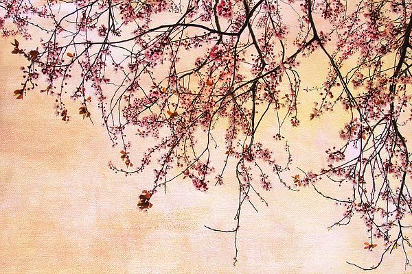 Canopy Print by Rebecca Cozart