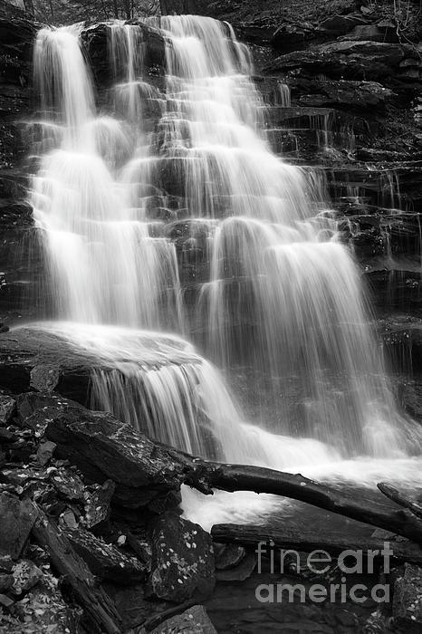 John Stephens - Canyon Cascade Wilderness Waterfall
