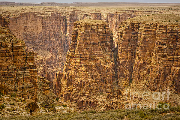 Canyons  Print by James BO  Insogna