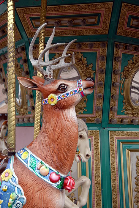 Carrousel 96 Print by Joyce StJames