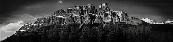 Castle Mountain Panoramic Print by Brent Mooers
