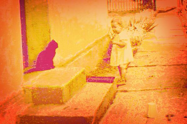 Cat Watching Print by Li   van Saathoff