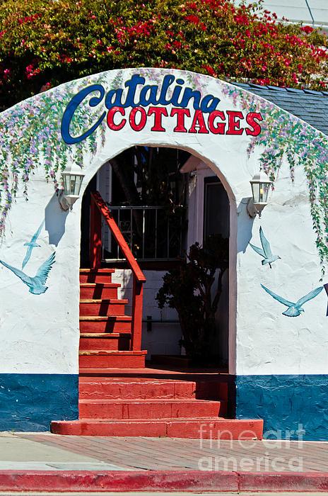 Mitch Shindelbower - Catalina Cottages