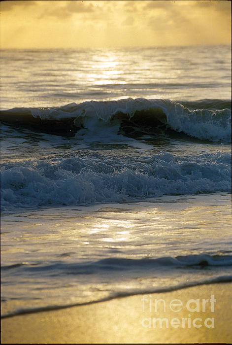 Darleen Stry - Catch an Ocean Wave