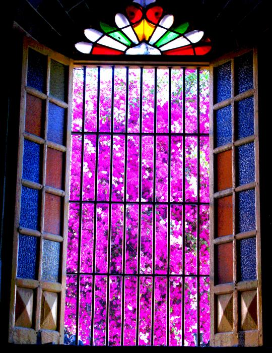 Cathedral Window By Michael Fitzpatrick Print by Olden Mexico