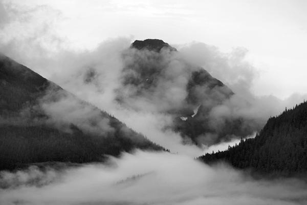Kristin Elmquist - Caught up in the Mist