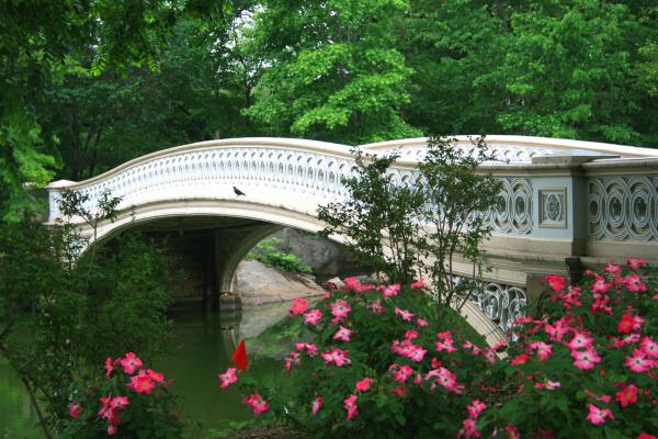 Central Park Bow Bridge In Spring Print by Christopher Kirby