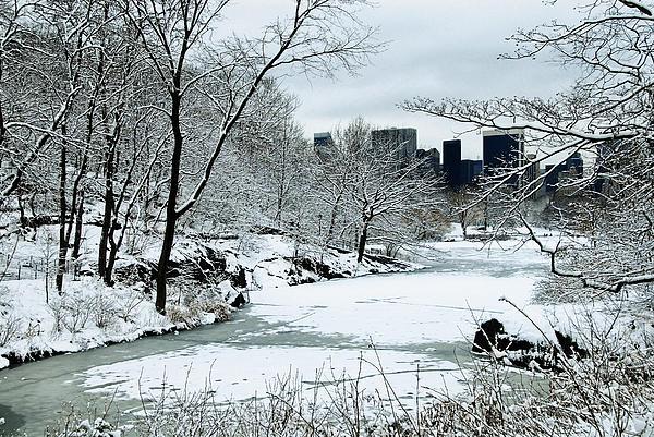 Frank McAdam - Central Park Winter 2