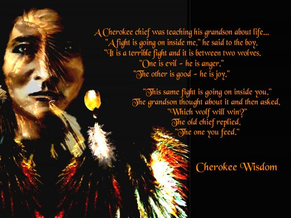 Cherokee Native American Indian Quote Quotes Gorgeous Cherokee Indian Quotes