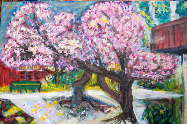 Cherry Blossom Time Print by Carolyn Donnell
