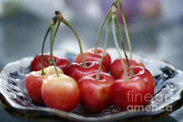Cherry For You Print by Yumi Johnson