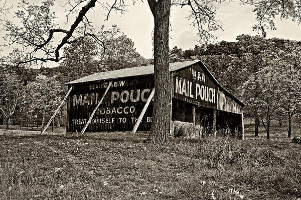 Chew Mail Pouch Sepia Print by Steve Harrington